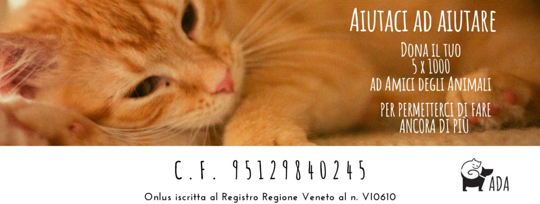 Amici degli Animali Vicenza Onlus